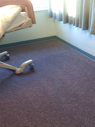 Clean carpet after blood stains